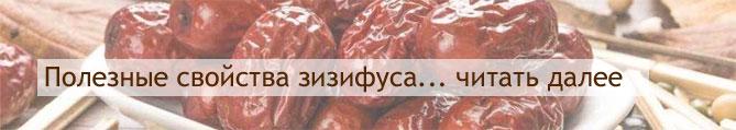 Унаби где растет в россии