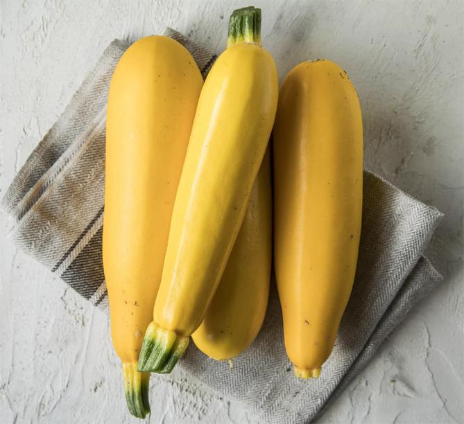 Семена хороших сортов кабачков для посева в открытый грунт
