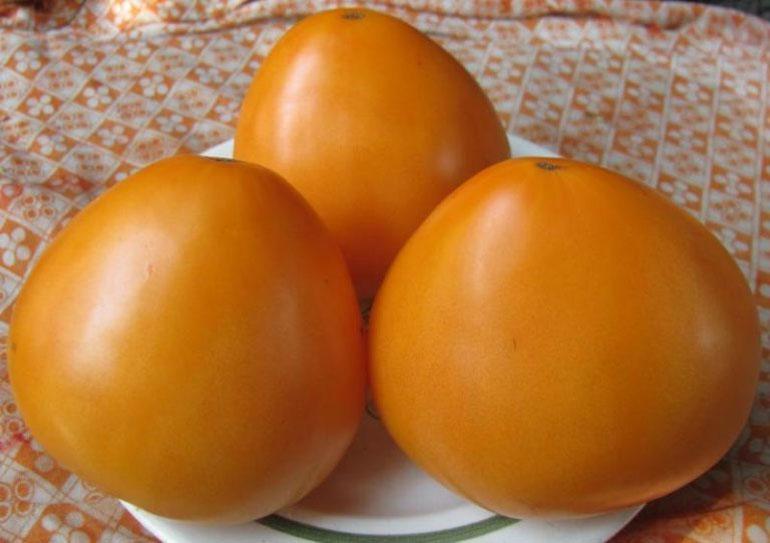 Характеристика и описание сорта томата Золотое сердце его урожайность
