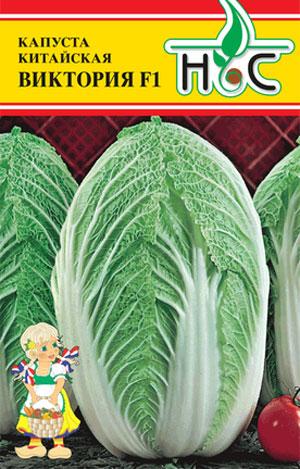 Лучшие сорта пекинской капусты устойчивые к цветушности и стрелкованию, фото, отзывы