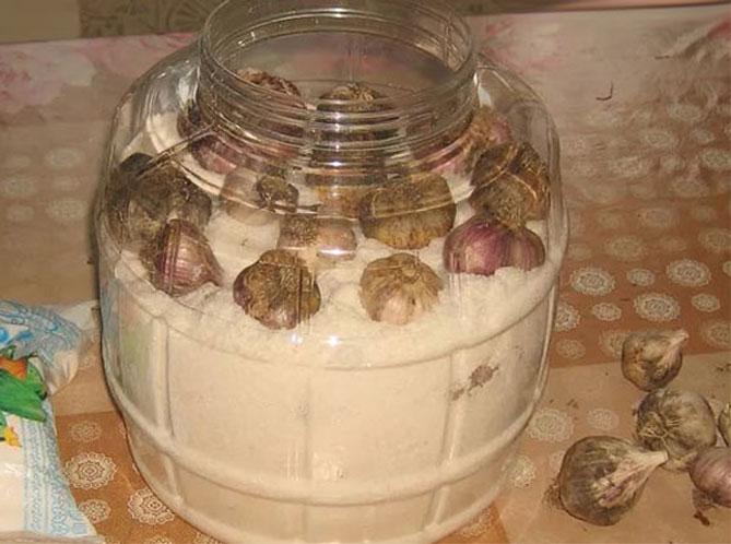 Как можно хранить чеснок в домашних условиях зимой?